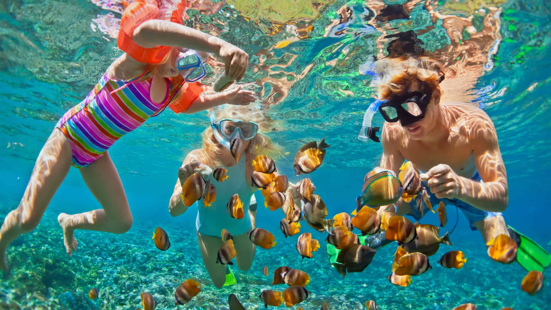 Family with mother father and daughter, snorkeling underwater with tropical fishes in coral reef sea pool wearing masks