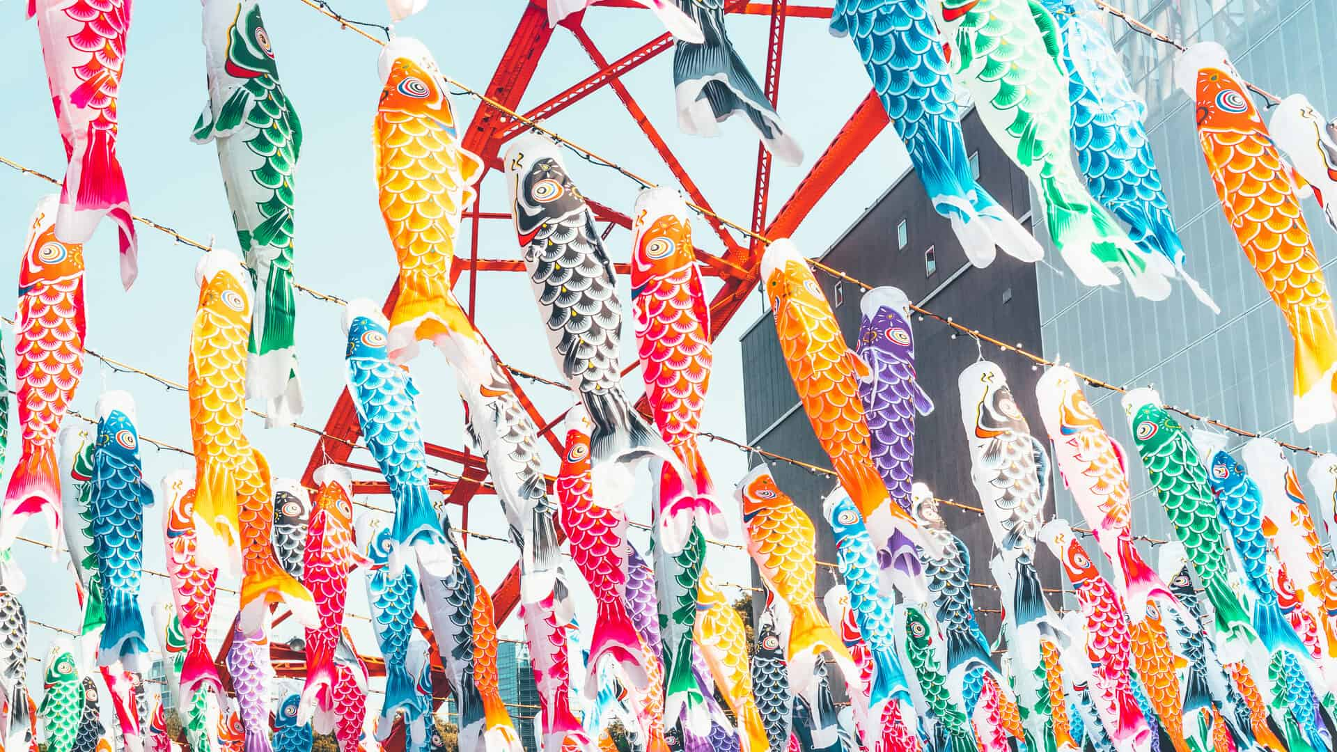 Coloful carp flags hanging on Children's Day in Tokyo, Japan