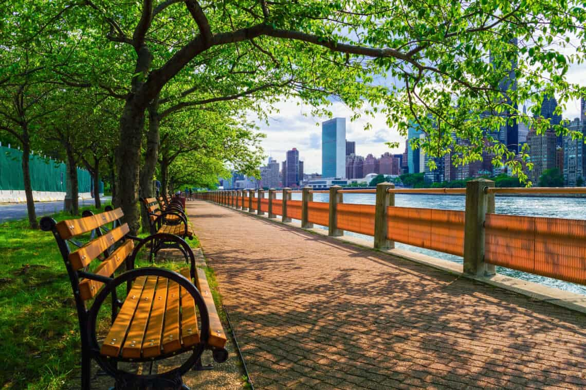 Park bench at the East River in New York during summer