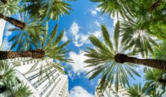 Miami Beach fish eye cityscape with art deco architecture and palm trees