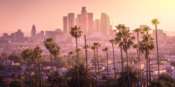View of Los Angeles downtown skyline at dawn with palm trees